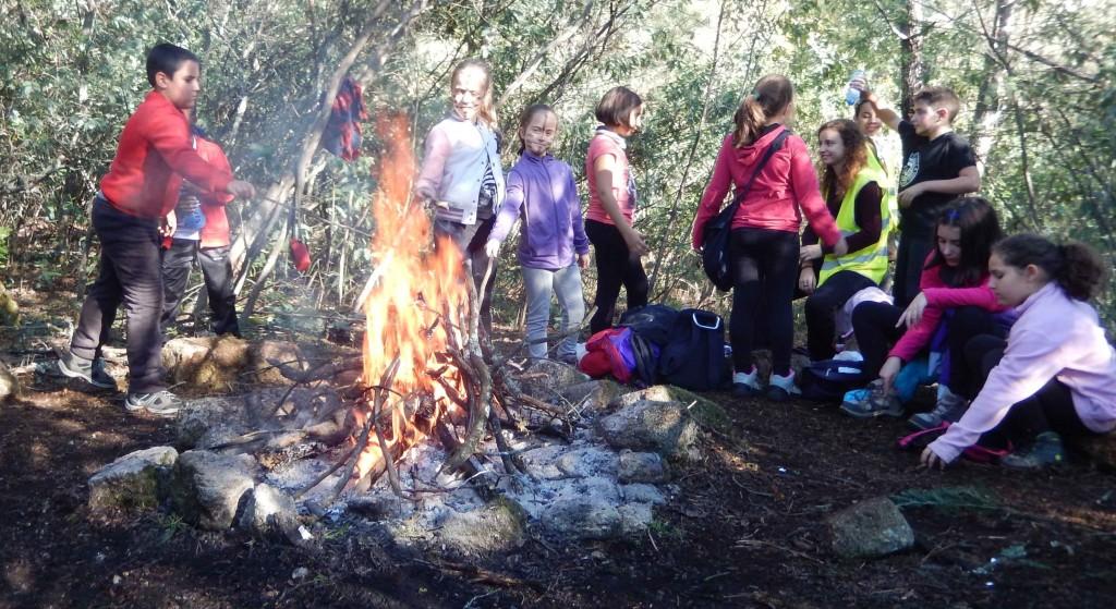 Scouts na fogueira