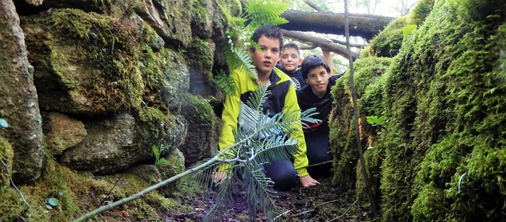 scouts exploradores