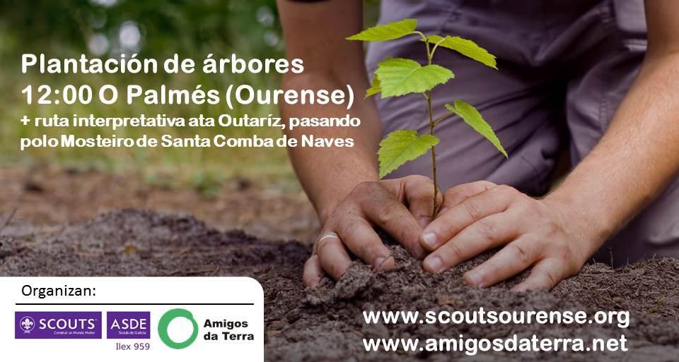 Plantamos árboles xaneiro 2016