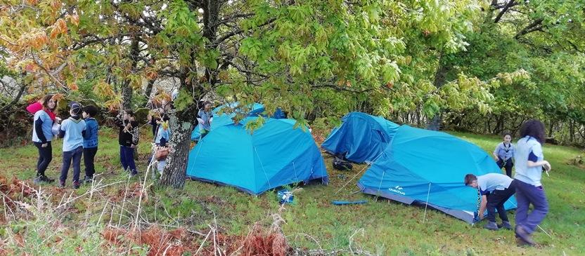 zona de acampada scout en Tourón