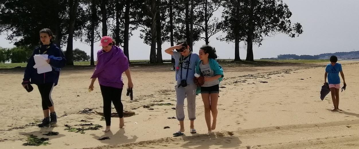 scouts na costa