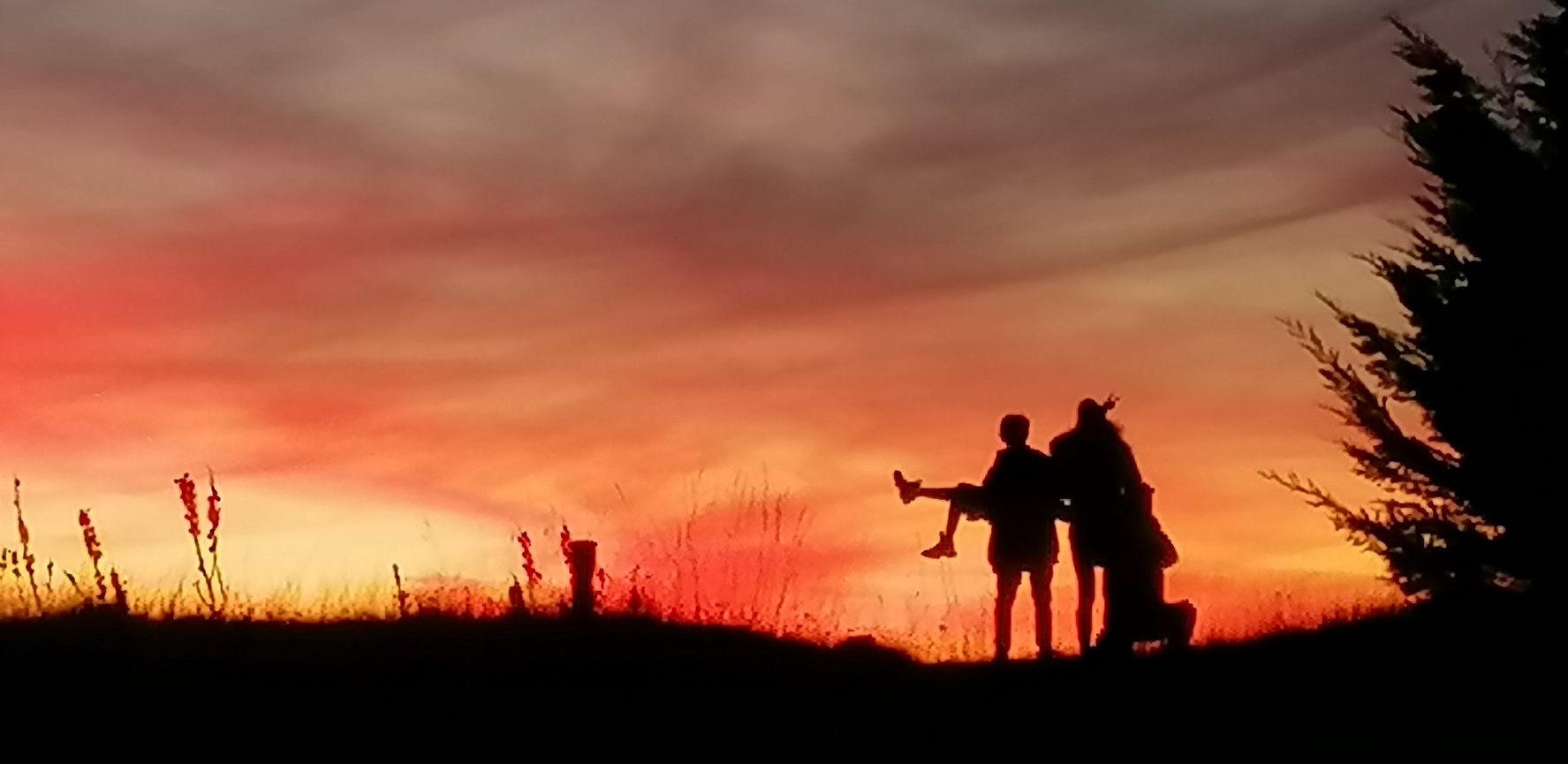 atardecer scout